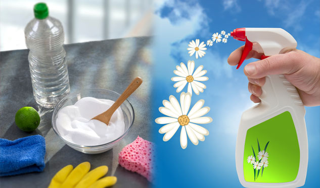 Ways to Make Your Home Smell Fresh & Clean! DIY Air Fresheners!