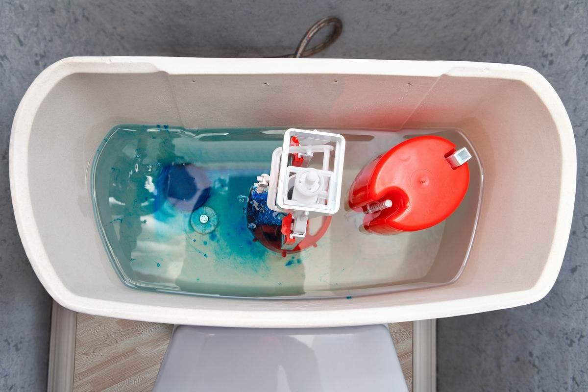 Verser votre adoucissant à l'intérieur de la citerne de vos toilettes Source : Depositphotos